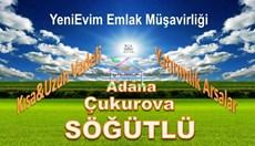 YeniEvim Çukurova Söğütlü'de 6.600 m2 Tarla HİSSELİ PARSEL.