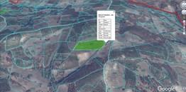 Mudanya Hançerli'de Köye Yakın Yatırımlık Satılık 14Dönüm Zeytin