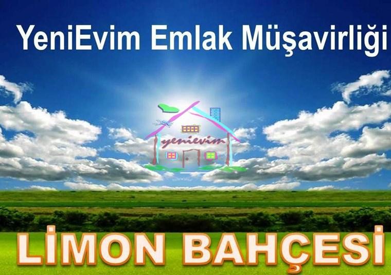 YeniEvim Mersin Silifke Bucaklı 11.500 m2 Satılık LİMON BAHÇESİ.